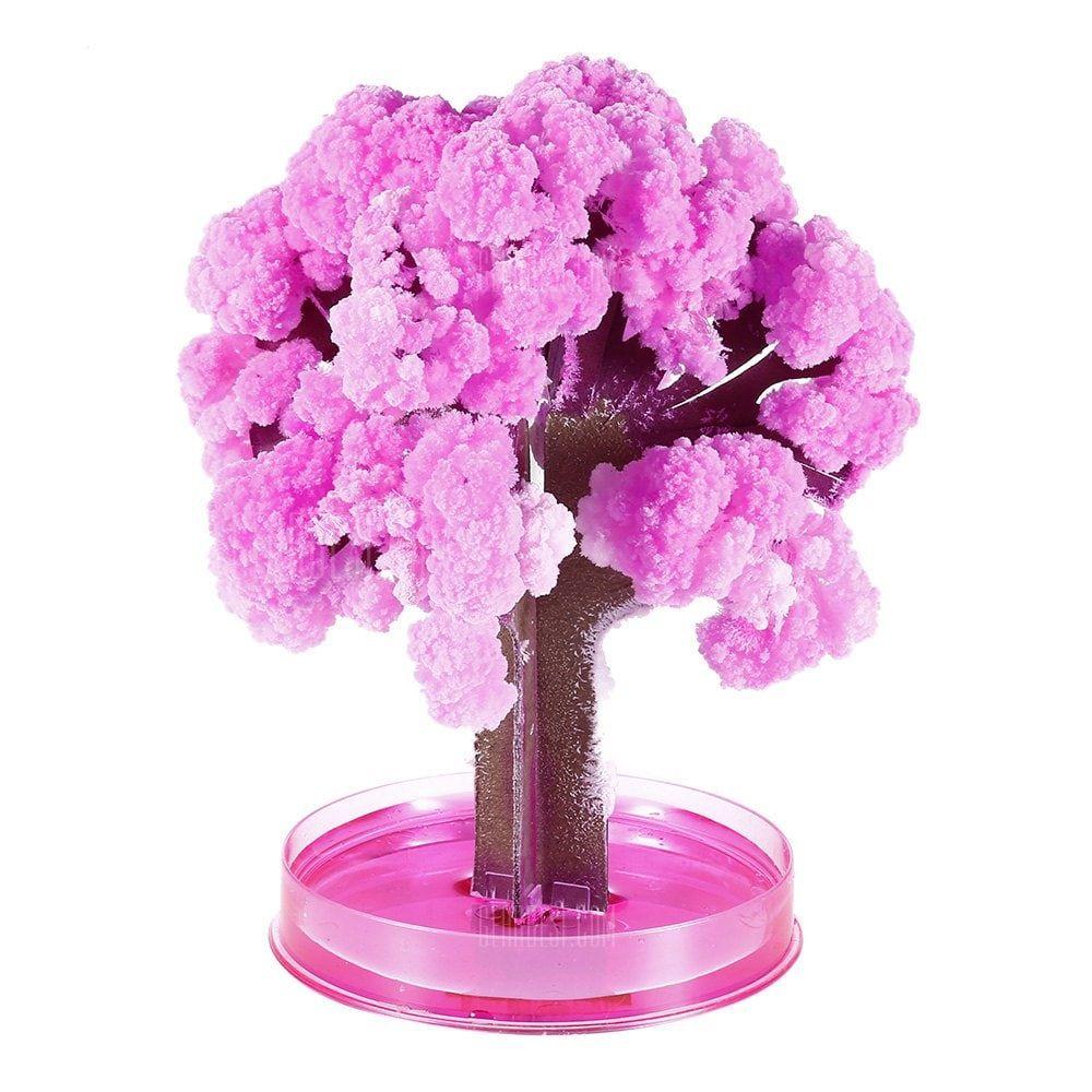 Magic Paper Growing Blossom Tree Decoration