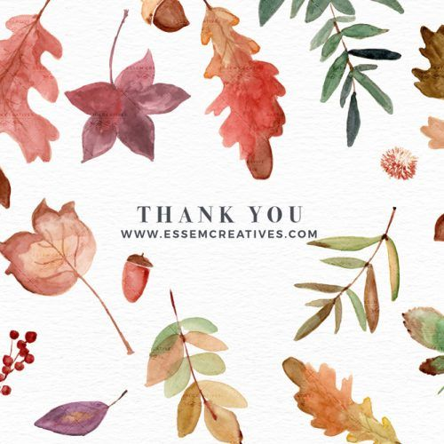 Watercolor Fall Leaves Clipart, Thanksgiving Fall Wedding