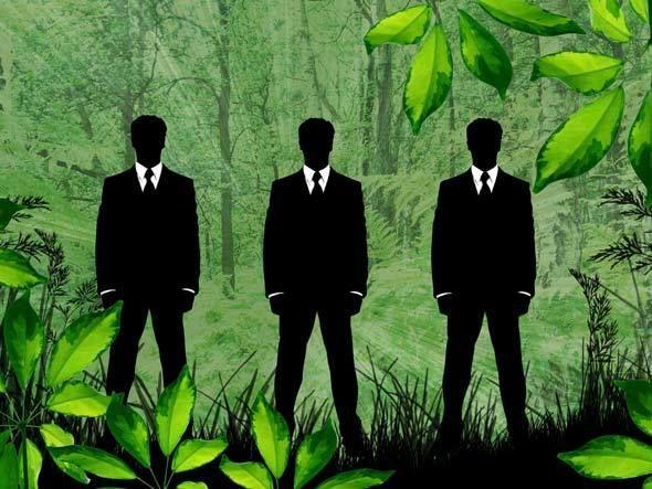 7 dicas para ter um escritório verde. #consumo #sustentabilidade #office