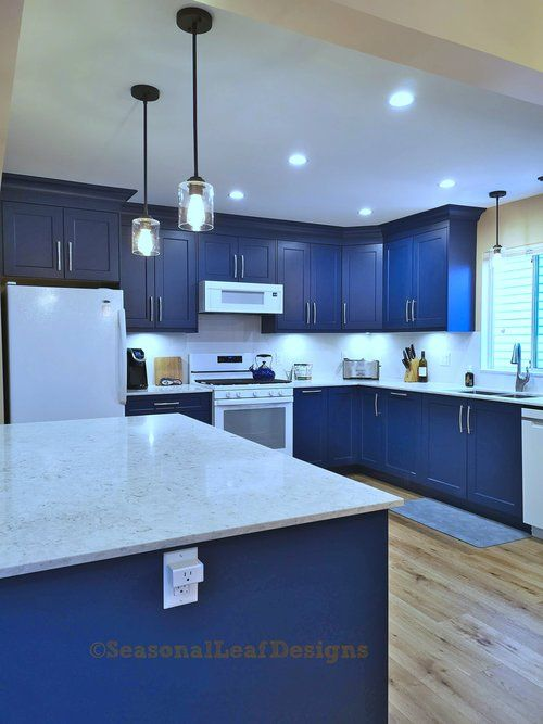 Blue Cabinets Open Kitchen Design Island Counter In Coquitlam British Columbia In 2020 Kitchen Design Open Kitchen Design Blue Cabinets