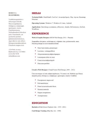 Neat Google Docs Resume Template  Resume Templates Google