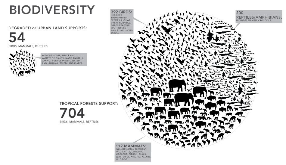 Biodiversity: Degraded or Urban Land Supporters #