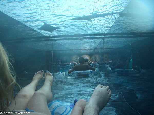 Splish-Splashing at Aquaventure at Atlantis The Palm
