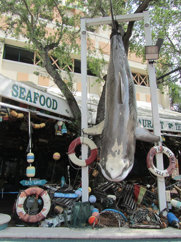 Fort Lauderdale - Reisebericht Rundreise Florida auf http://rassambla.de