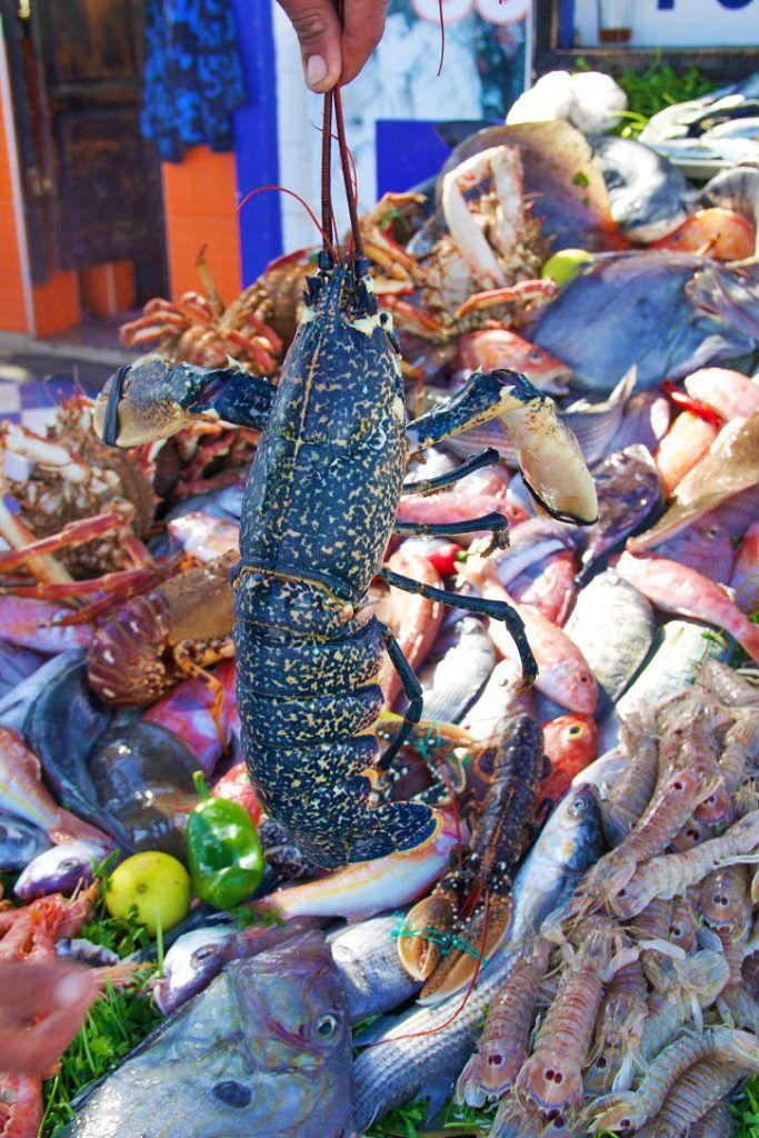 e4c135936c seafood fish market lobster essaouira morocco Riverside Market, Seafood  Market, Mecca, Surf Shop