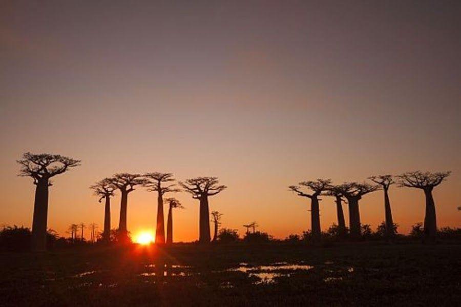 Las 10 mejores puestas de sol del planeta!!!! Mira y sorprendete | Tecnología