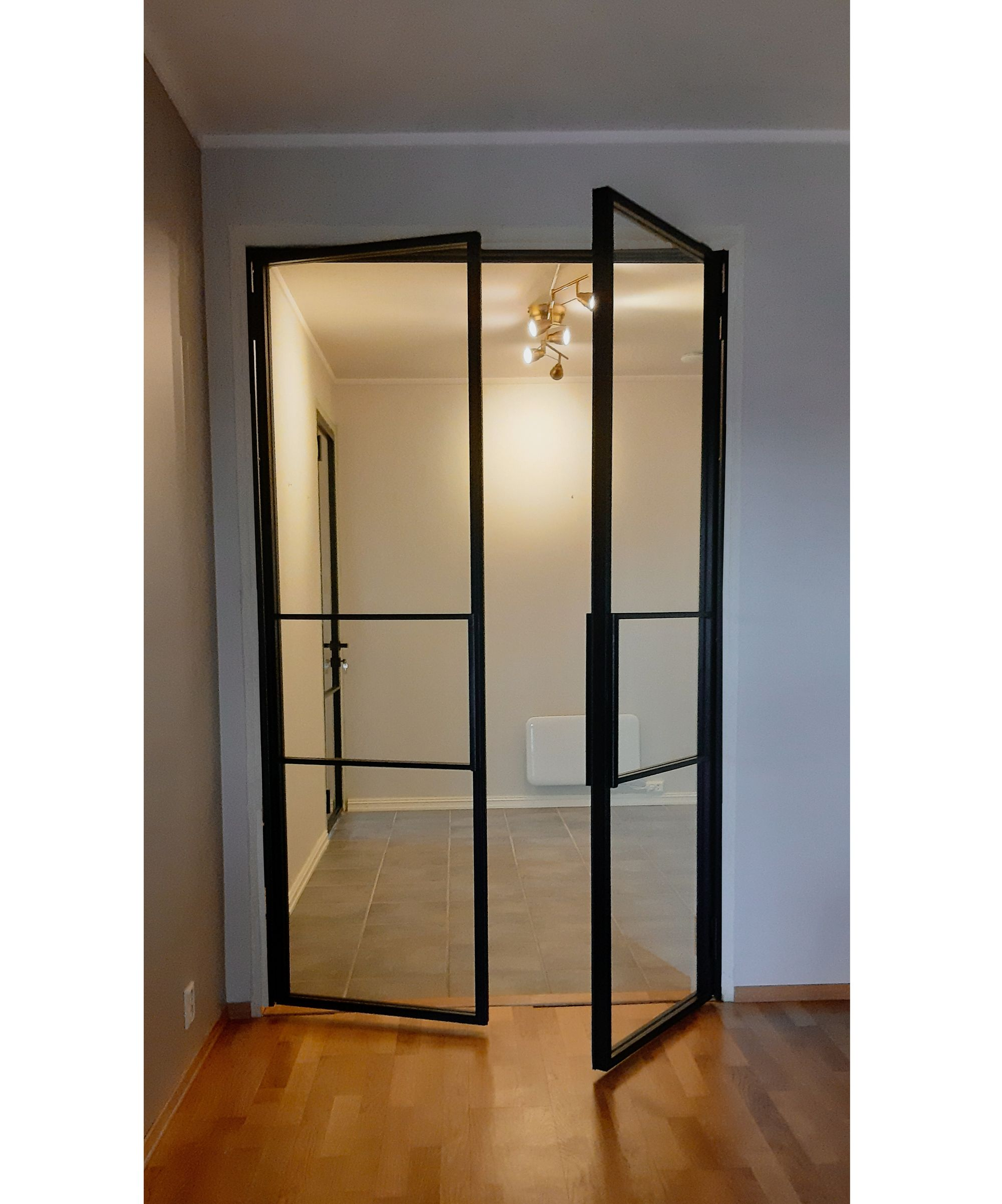 Double doors in steel and glass with fixed minimalistic hand…