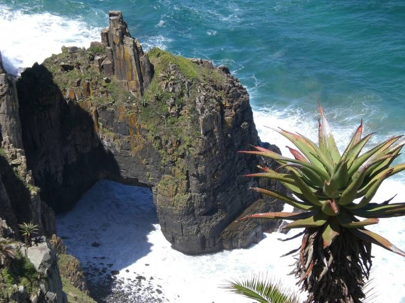 The rugged Wild Coast in South Africa   FINAL MAJOR ...
