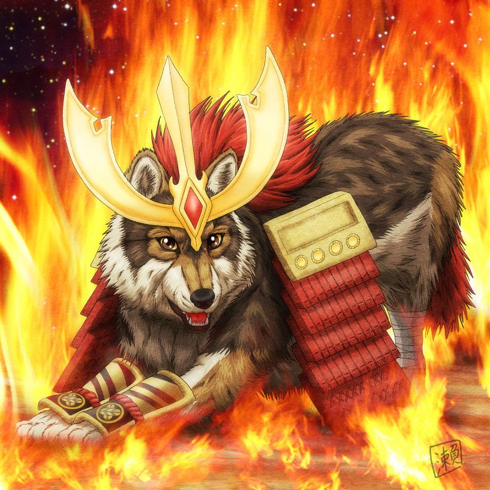 Warrior Wolf by on DeviantArt
