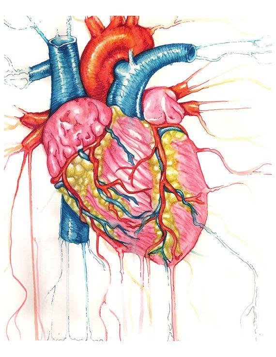 Anatomical Heart Print, heart drawing, anatomical heart painting ...