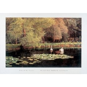 ''The Lily Pond Shudbrook Near Lincoln'' by Edward R. Taylor Fairfield Art Publishing Art Print