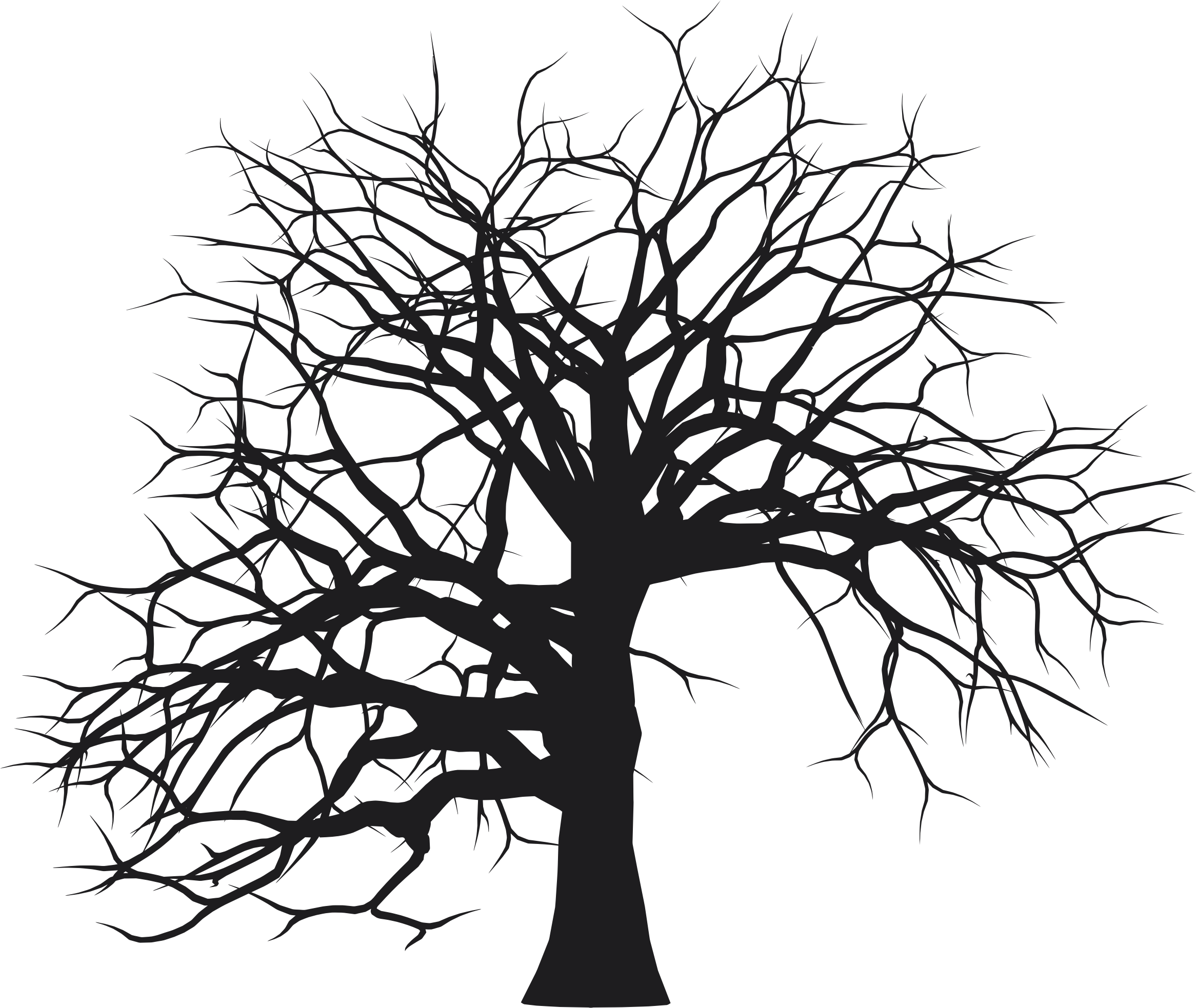 In pursuit of the twistiest plot and the most unreliable narrator. | Tree  silhouette, Silhouette images, Art