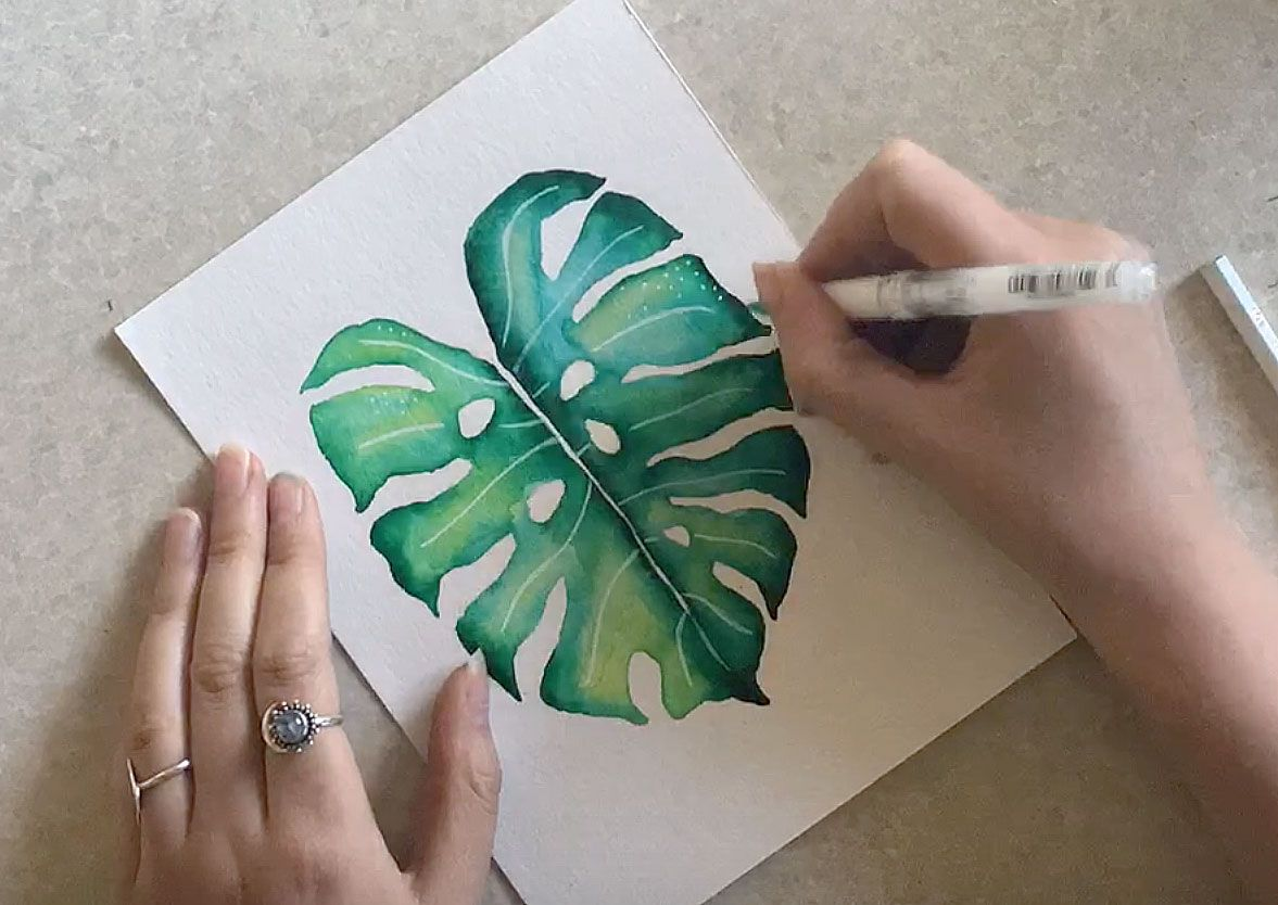 Watercolour Monstera Leaf Tutorial White Gel Pen Watercolor