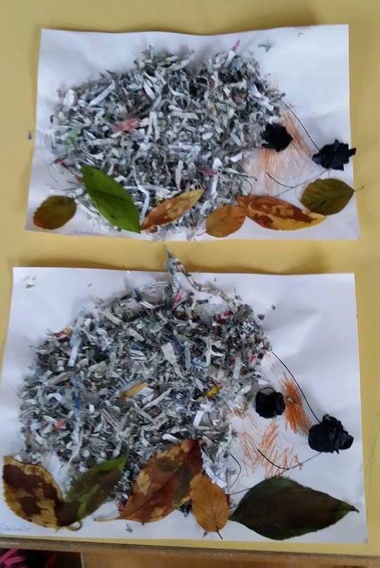 shredderpapier igel kiga herbst igel basteln herbst. Black Bedroom Furniture Sets. Home Design Ideas