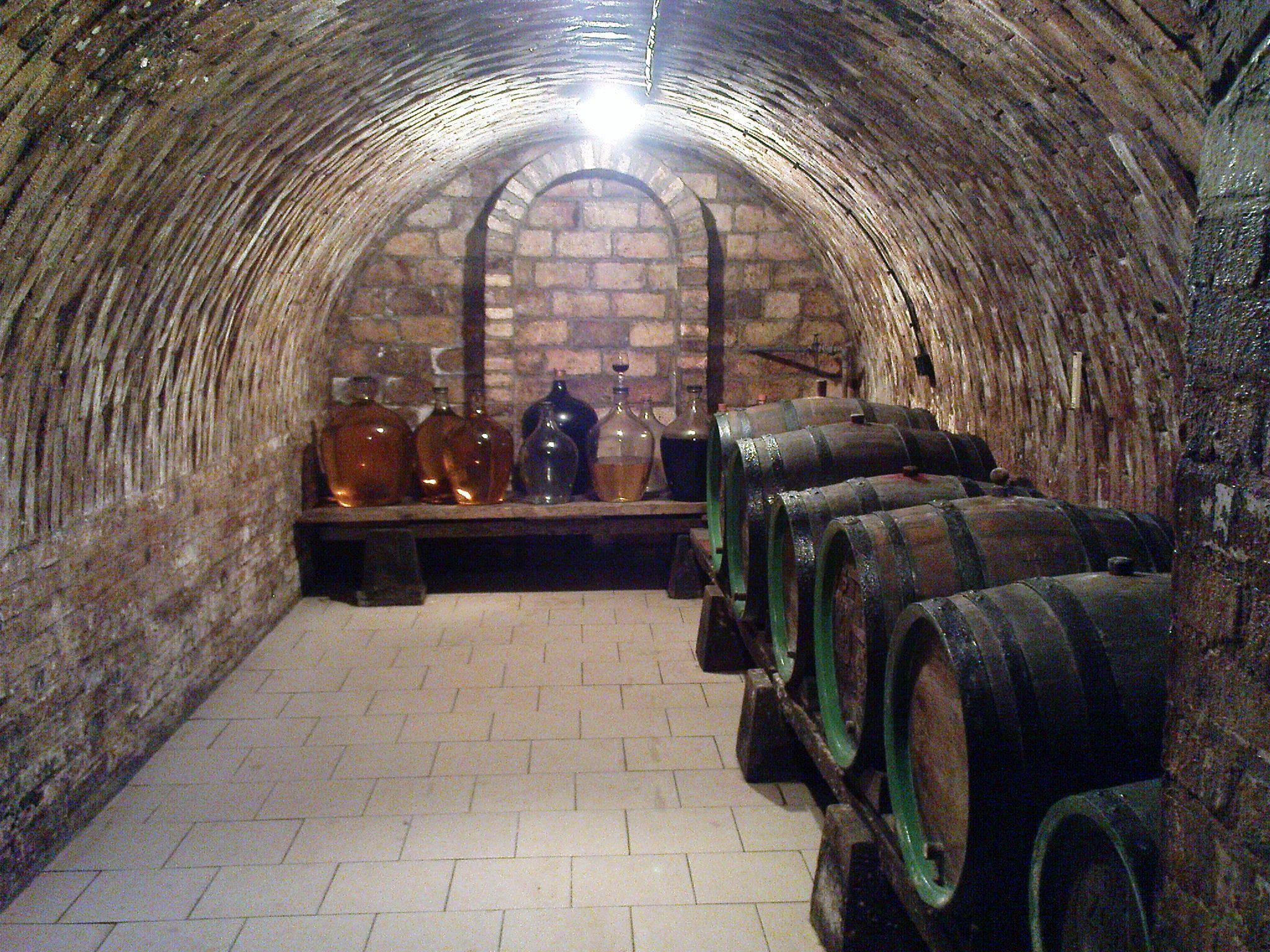 Partially Underground Garage Google Search Root Cellar