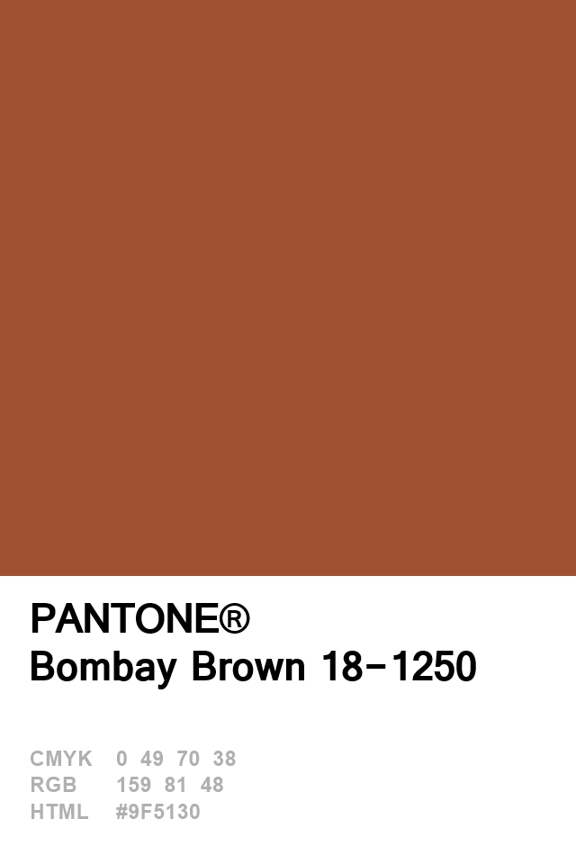 Pantone Ay Brown Colour Of The Day 10 January