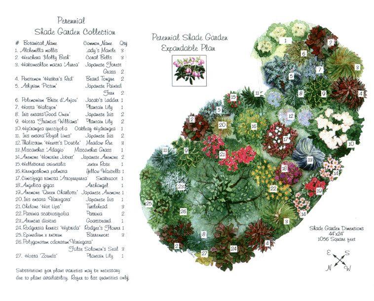 Zone 5 Shade Garden Layout