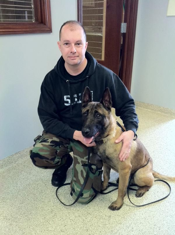 K9 Karson Expected To Fully Recover Officials Say Police Dogs Dogs Service Dogs