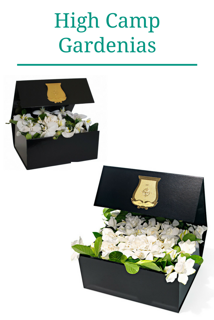 Gardenias in a box Best gift ideas Flowers as gift