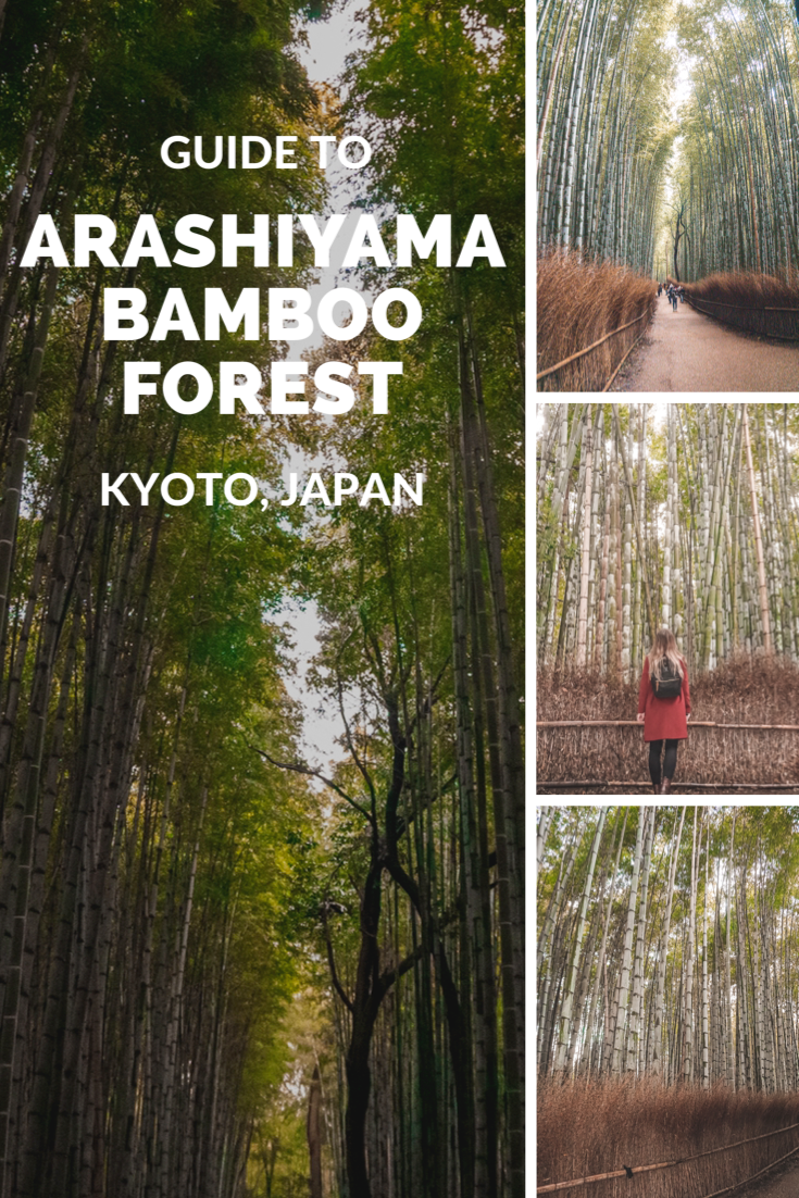 Arashiyama Bamboo Forest is a must visit when travelling through Japan! Read more on my blog about my Asia travels.