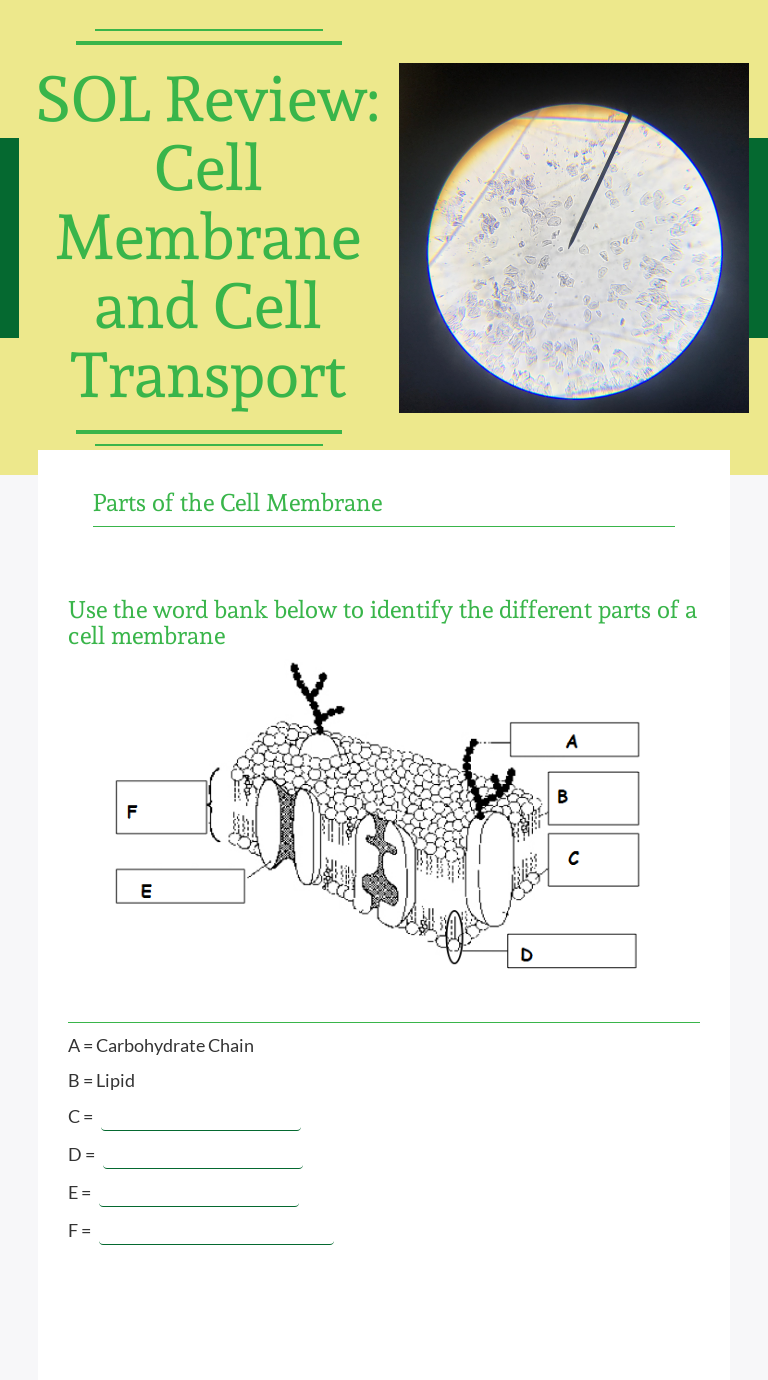"Wizer.Me blended worksheet ""SOL Review Cell Membrane and"