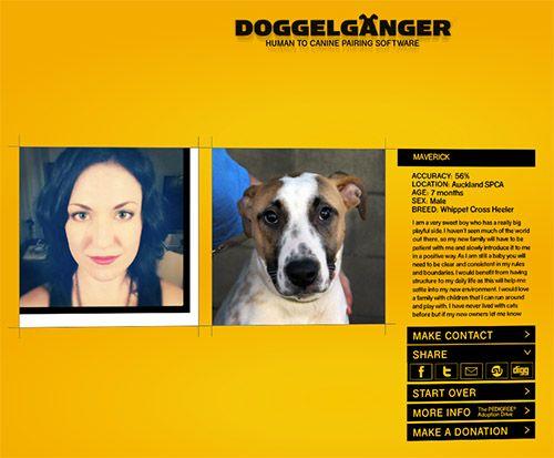 Doggelganger Human To Canine Pairing Software Dog Milk Canine Dog Milk Whippet