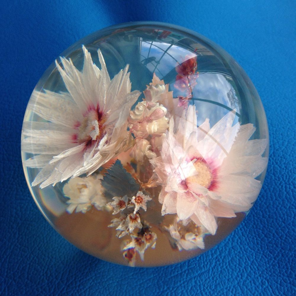 Hippocampus Resin Paperweight Mixed Flowers Lucite Vintage