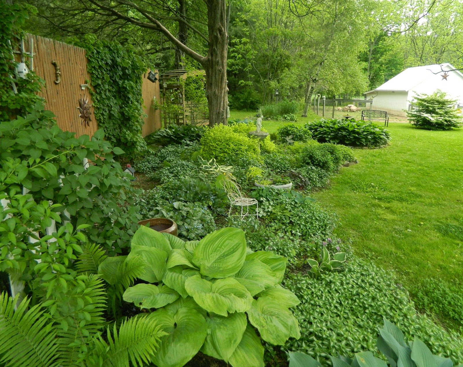 Pam S English Cottage Garden Cottage Garden Shade Garden English Cottage Garden