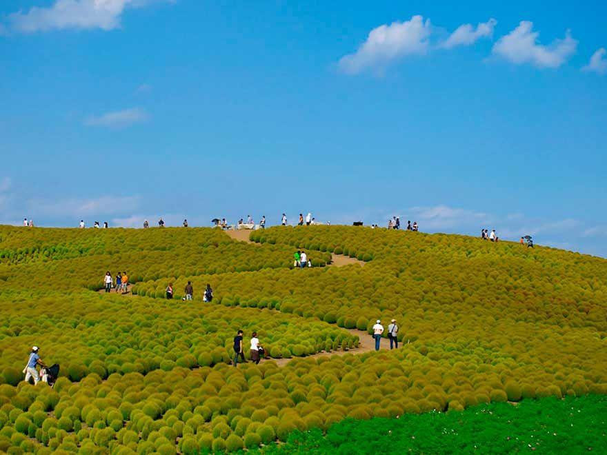 Parque Hitachi, Japón
