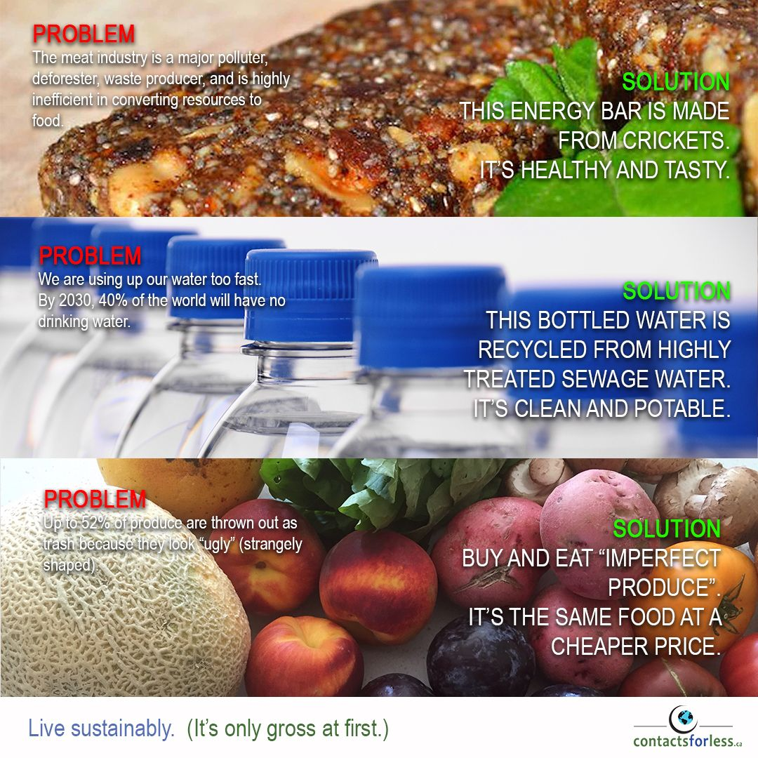 Pin by ContactsforLess.ca on Save the Earth Food to make