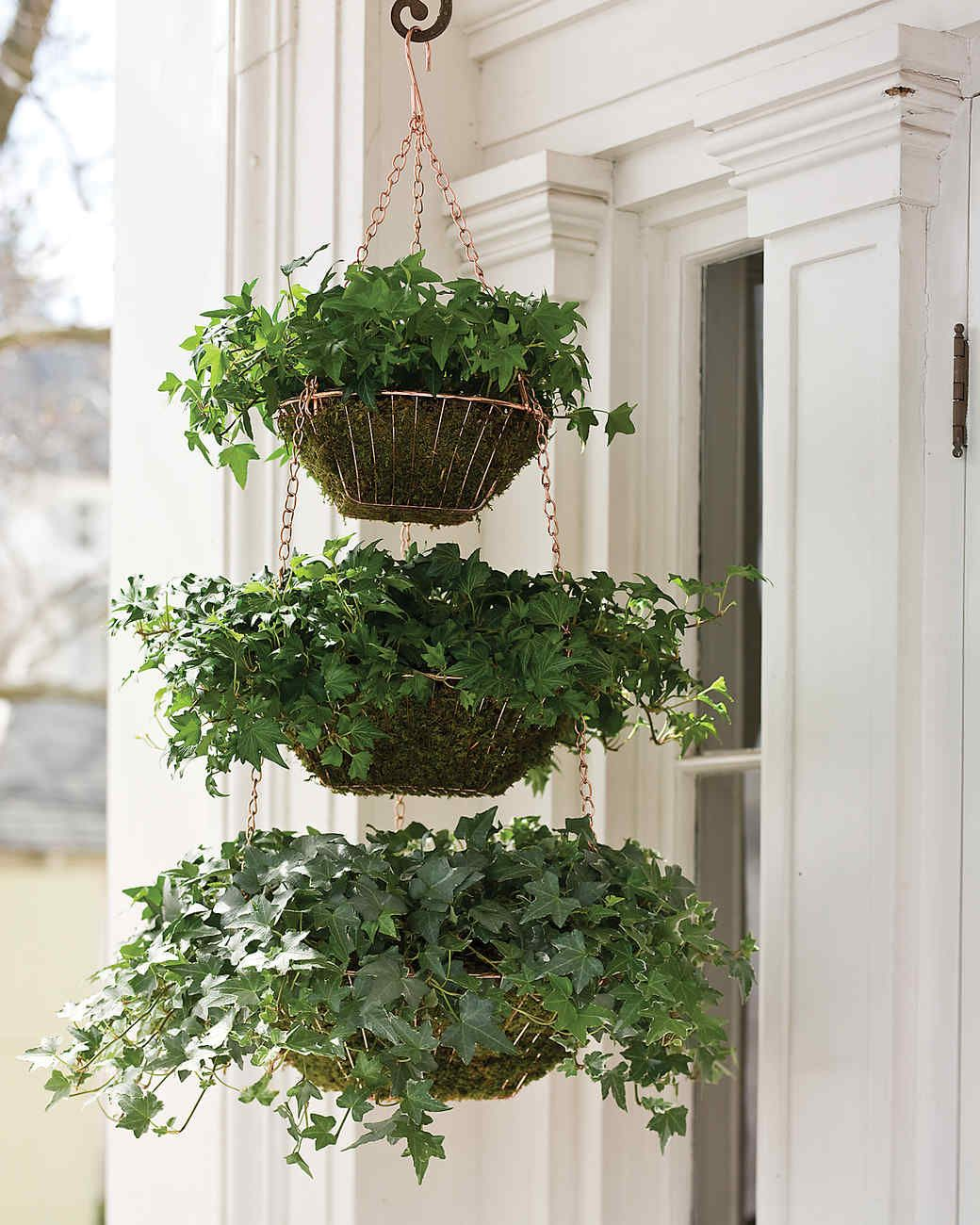 Create A Verdant Planter For Your Front Porch Using A Trio Of Hanging Wire Baskets Sheet Moss And 2 Containers Of Ivy Hanging Plants Garden Containers Plants