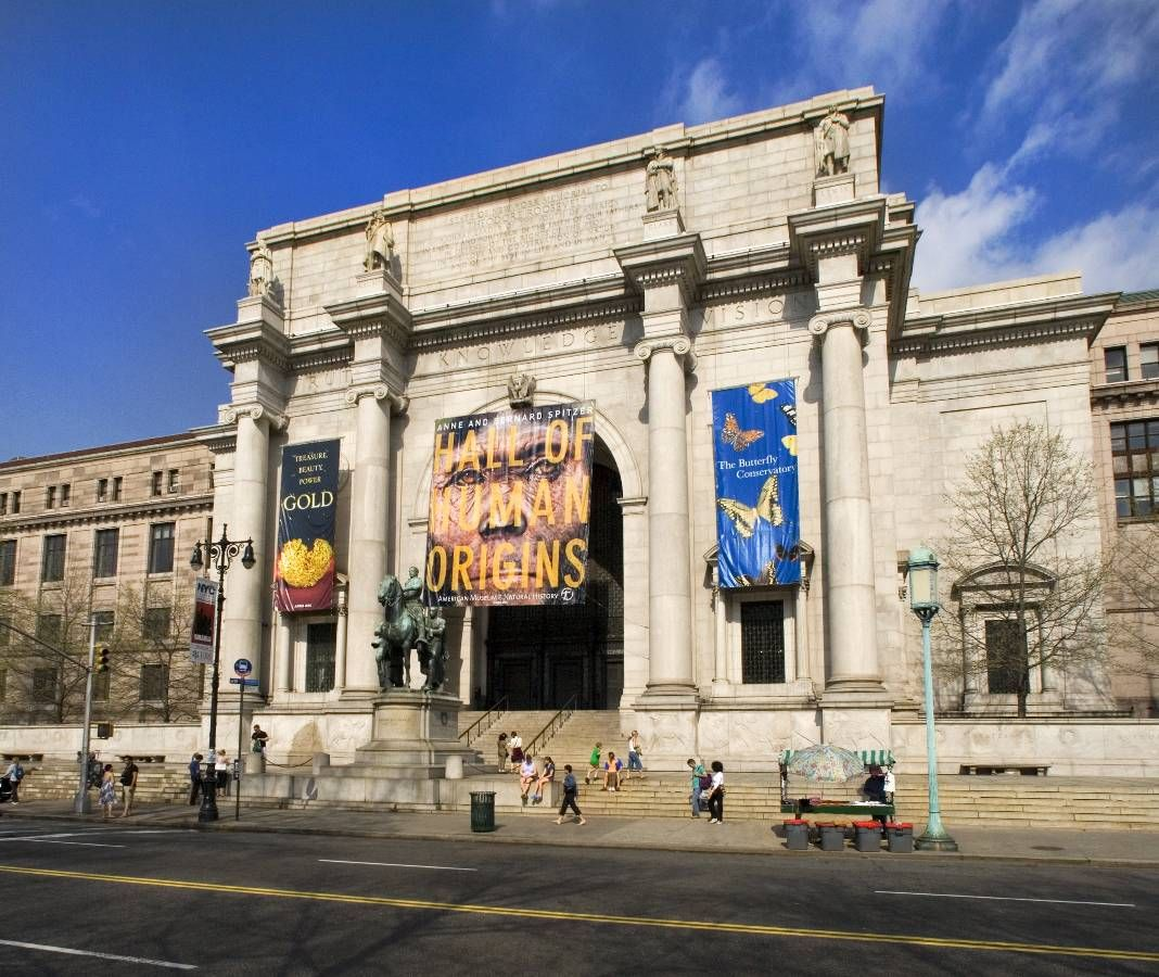 Ideas About Natural History Musuem On Pinterest Natural - Historical museums in usa