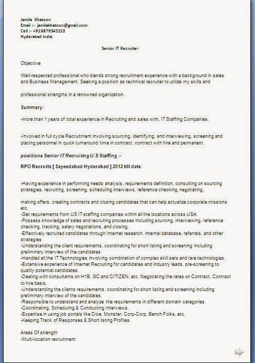 Examples Of Professional Resumes Sample Template Example