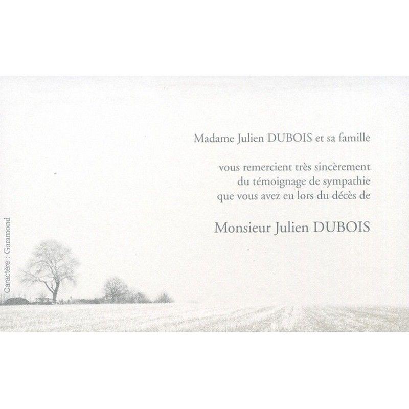 carte de remerciement deuil Carte de remerciement décès DECORTE 6574 illustration paysage