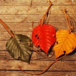 葉っぱのキーケース オトシブミキーラップ・サクラ yellow