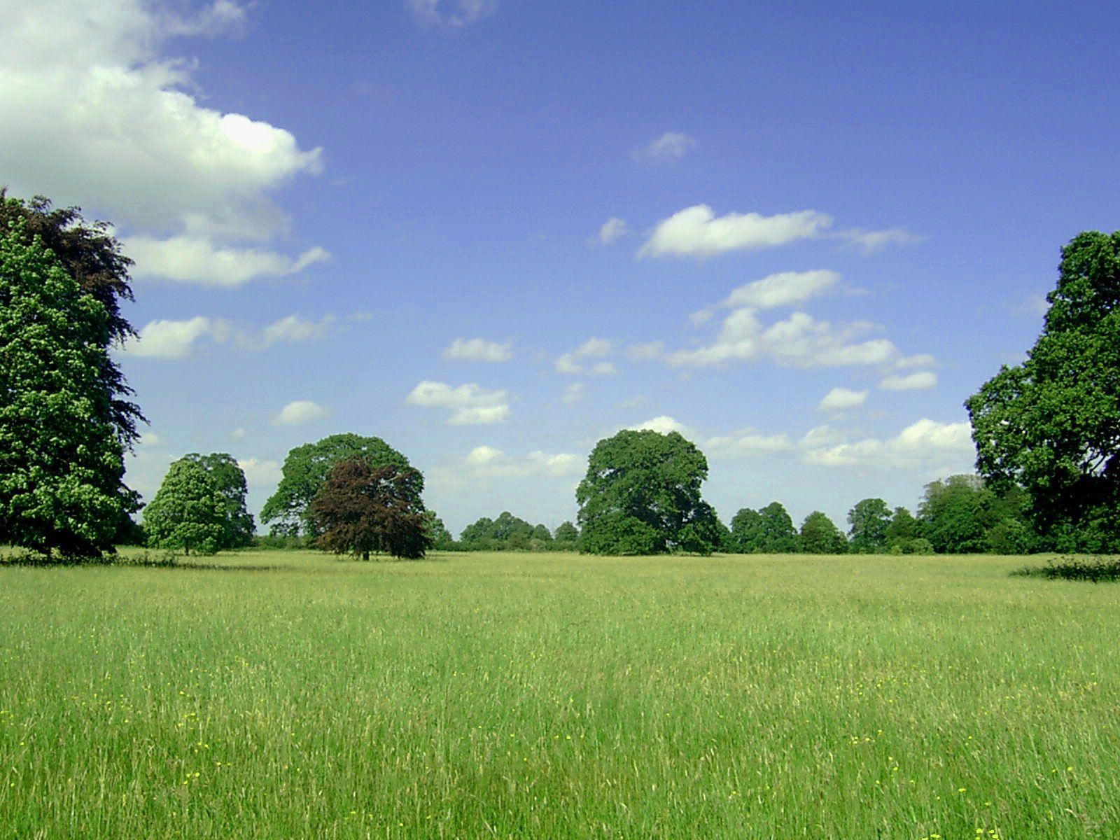 Pin Most Beautiful Landscape Wallpaper on Pinterest | Amazing ...
