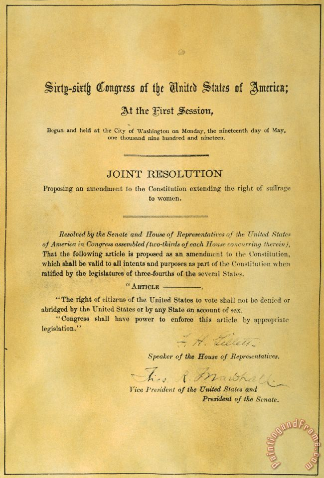 We Can Provide 19th Amendment 1919 Giclee Print Stretched Canvas