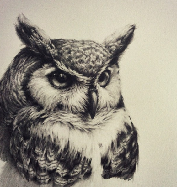 discover ideas about owl tattoo drawings