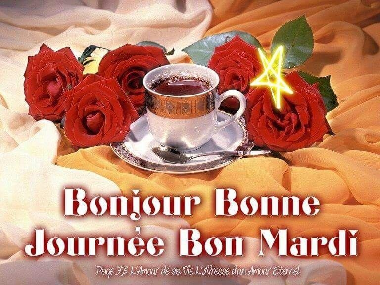 Image result for bon mardi  tumblr