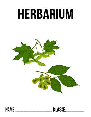 Herbarium Deckblatt In 2020 Deckblatt Deckblatt Schule Deckblatt Vorlage
