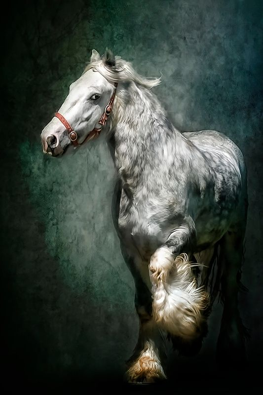 THE SILVER GYPSY Art Print by Tarrby/Brian Tarr