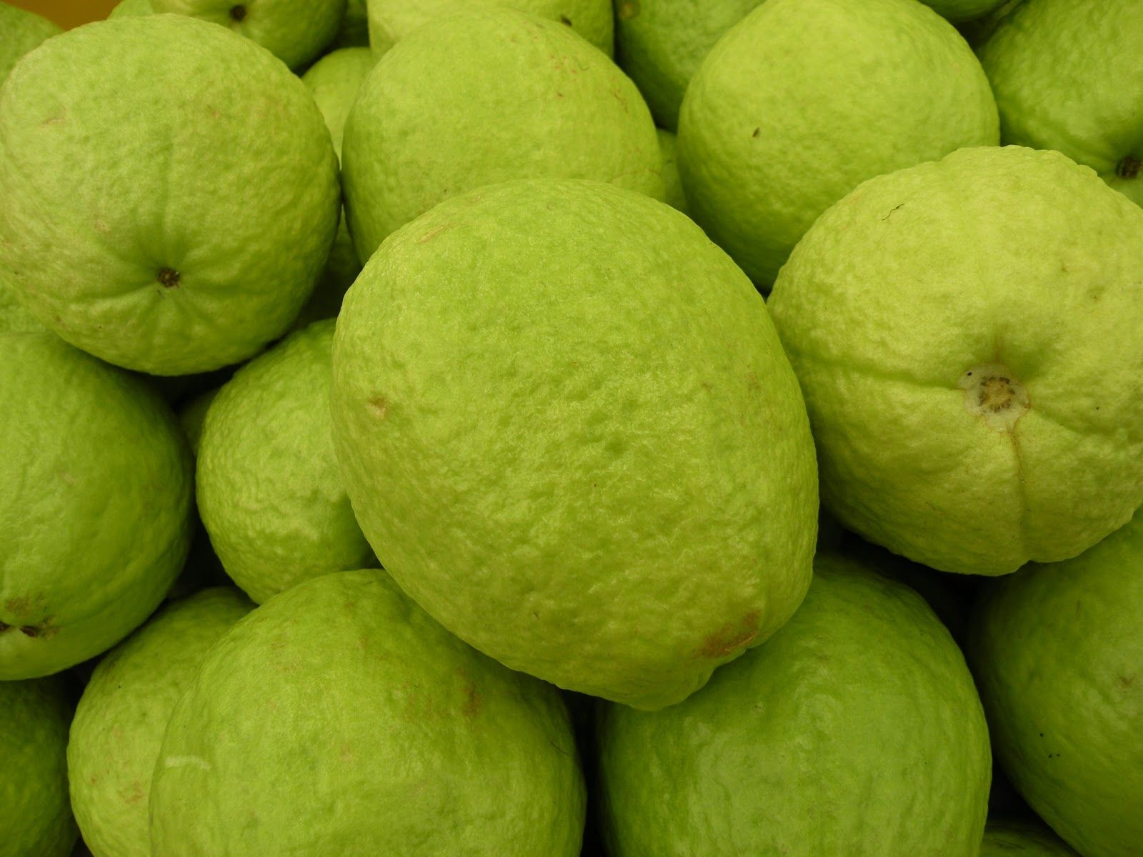 Guava Pictures Download Guava Wallpapers Images Guava Pictures Guava Pictures