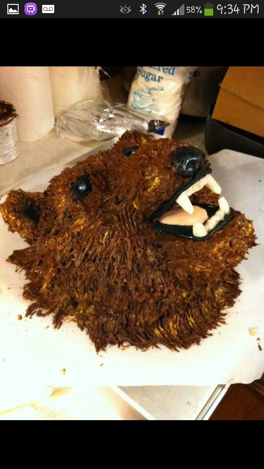 Grizzly Bear Cake I Made My Pins Bear Cakes Birthday