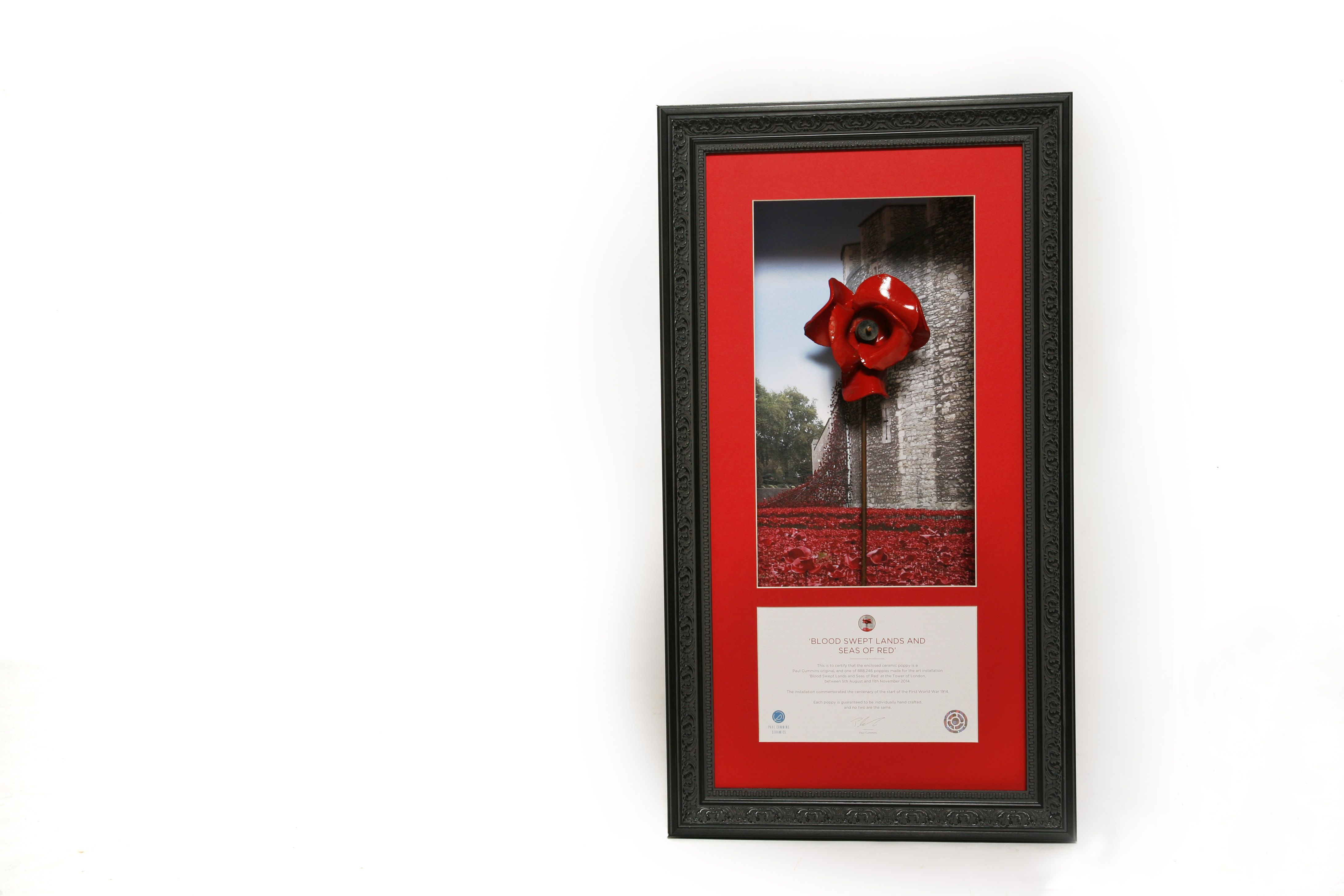 A custom made box frame featuring a ceramic Tower of London Poppy ...