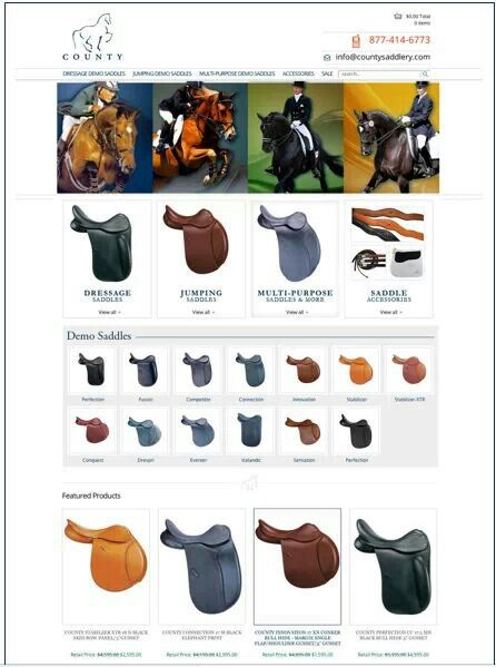 English Saddle Types Level 2 Tack Badge Horse