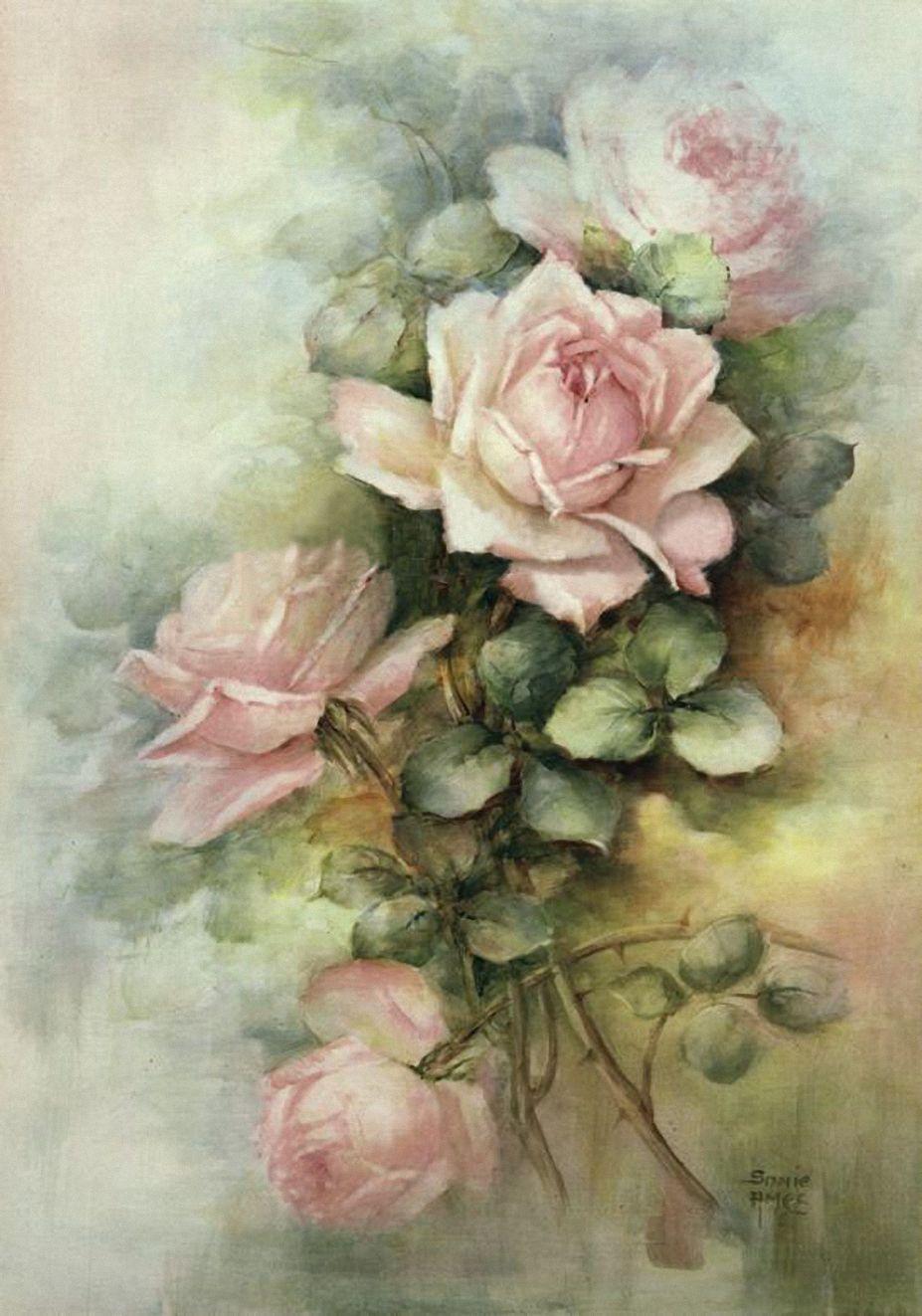 Sonie Ames Google Search Beautiful Flower Drawings Rose