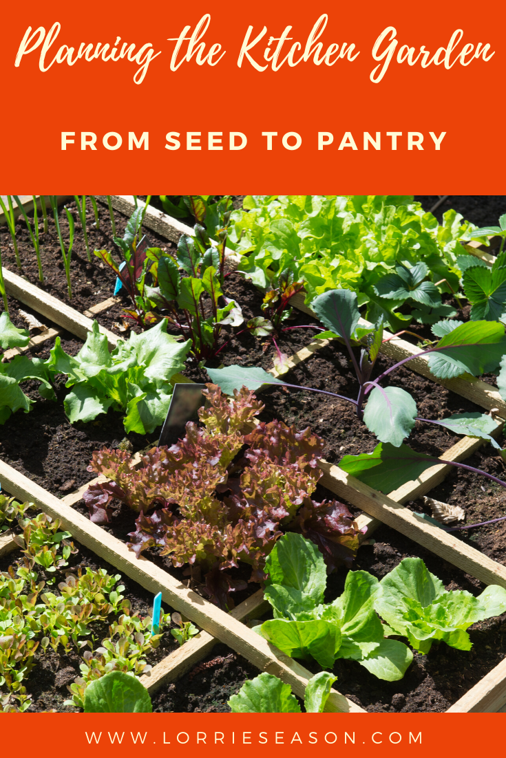 Planning The Kitchen Garden From Seed To Pantry In 2020 Fall Garden Vegetables Summer Vegetables Garden Backyard Vegetable Gardens