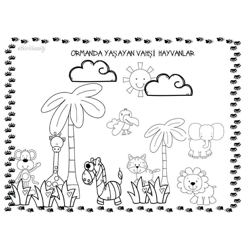 41 En Iyi Hayvanlar Goruntusu Hayvanlar Okul Oncesi Ve Okul
