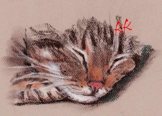 ACEO PRINT Brown Tabby Cat  Pastel Drawing by OneKeeneKat on Etsy, $3.99