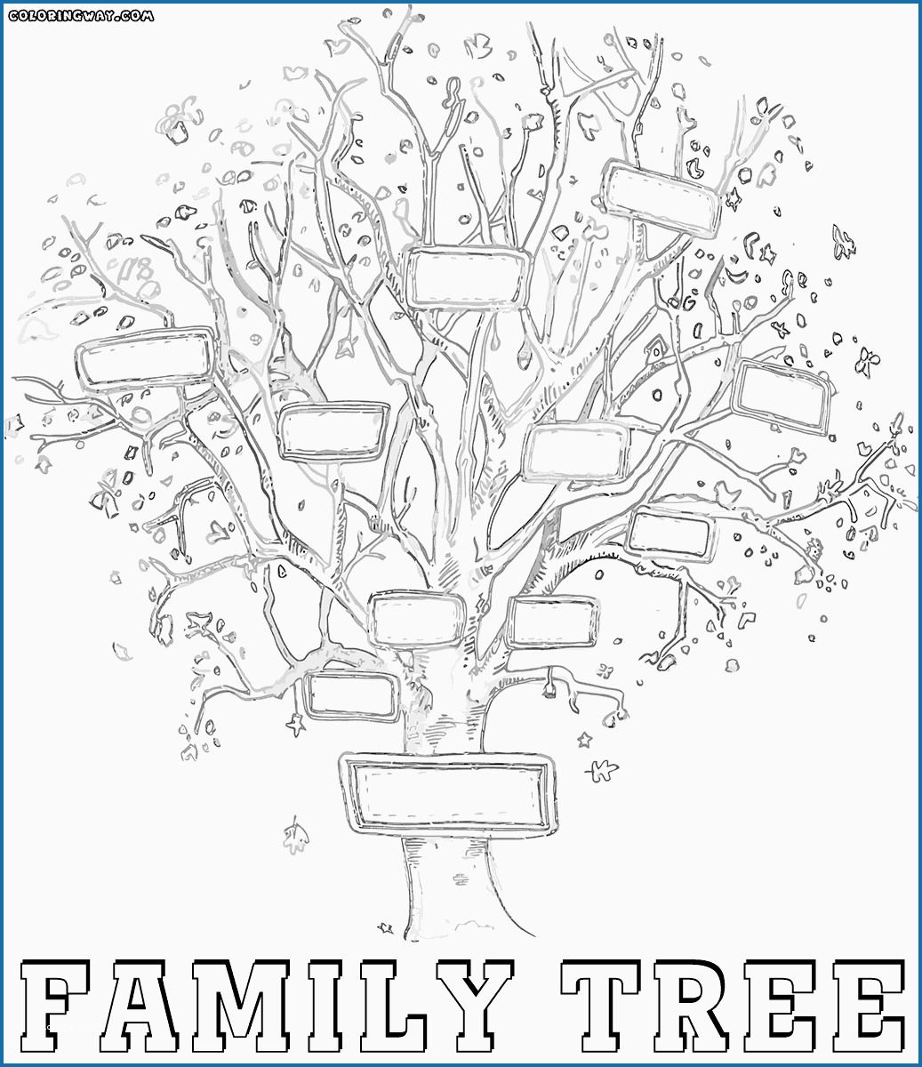 Family Tree Coloring Page Cute Family Tree Coloring Pages Anablog Tree Coloring Page Family Tree Printable Family Tree